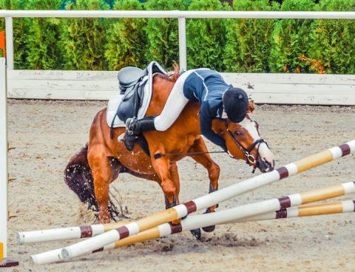 Letselschade door een paard, wie is aansprakelijk?